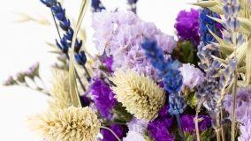 Fiori secchi: bouquet senz'acqua decorativi e perenni