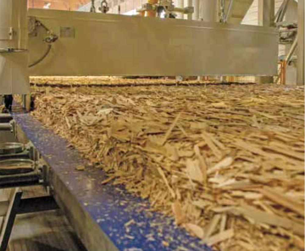 Pannelli OSB pressatura - Wood Lab