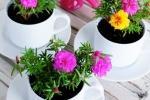 Centrotavola fai da te con fiori in tazza, da gomakeme.com
