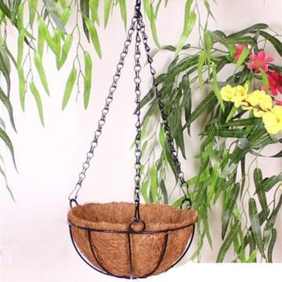 Vaso sospeso in cocco Amazon