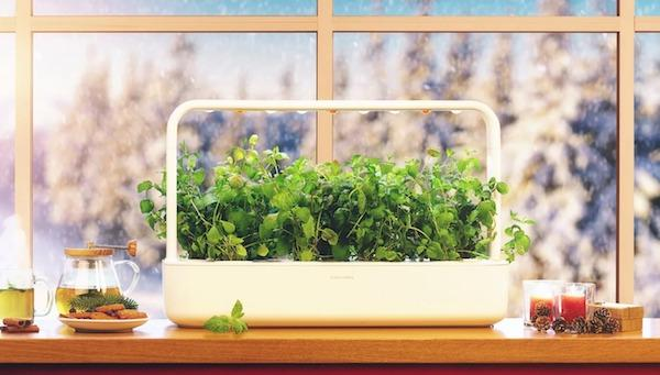 Serra indoor The Smart Garden 9 - Foto by Click&Grow