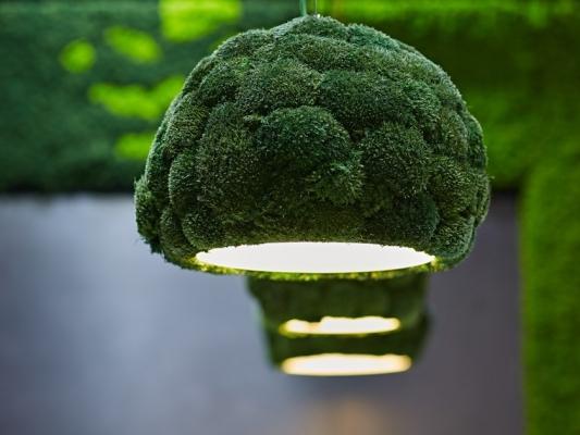 Alcune case producono lampade più sostenibili fatte con materiali green