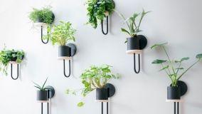 Portavasi e portafiori di design per arredare casa con il verde