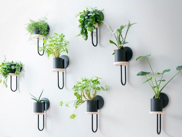 Portavasi di design a parete, da Miniforms