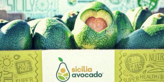 Avocado Sicilia Sfusopernatura