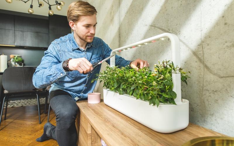 Smart Garden 9 di Click & Grow