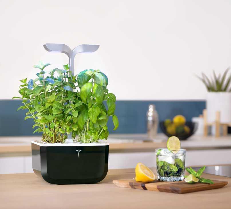 Veritable, il modello Smart Garden