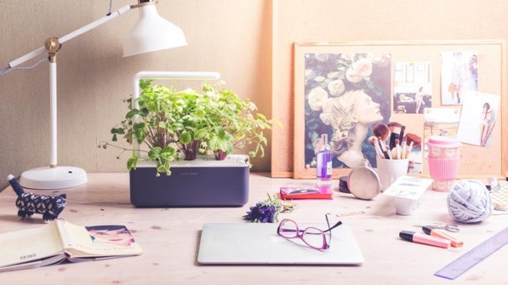 Sistema idroponico Smart Garden 3 di Click & Grow
