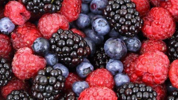 Coltivazione dei frutti di bosco, anche in vaso