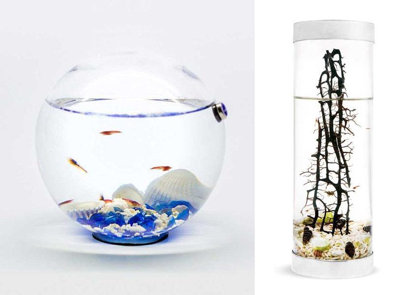 Complementi d'arredo con biosfera in miniatura Beachworld by The Art of Science