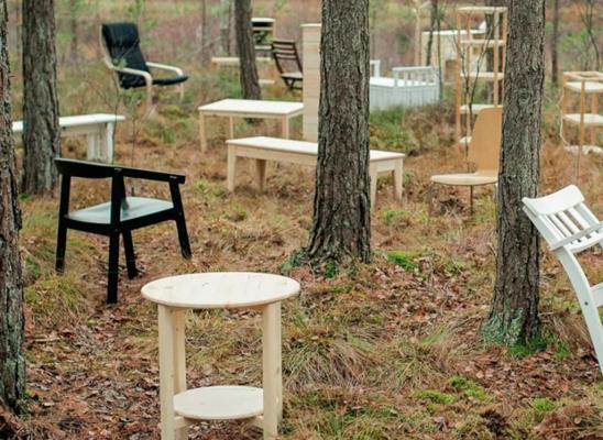 Ikea e la sostenibilità ambientale