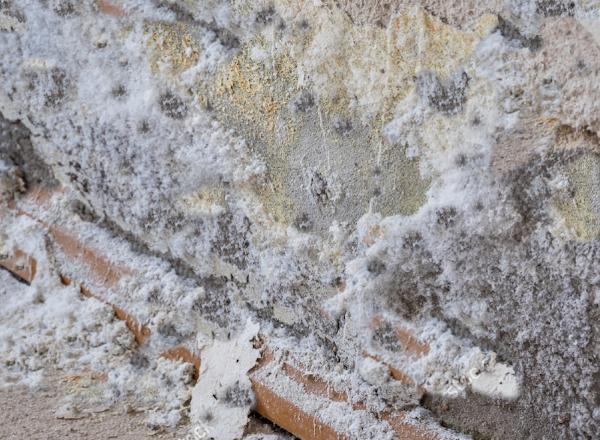 Formazione di salnitro e deterioramento muratura