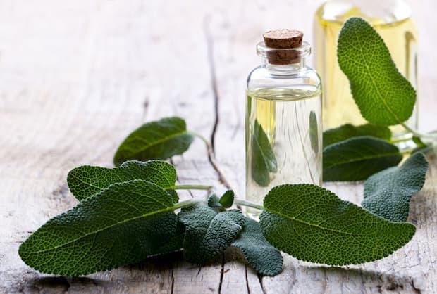 Olio essenziale di Salvia