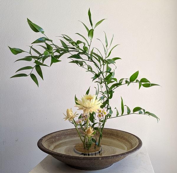 L'energia vitale dei fiori in casa