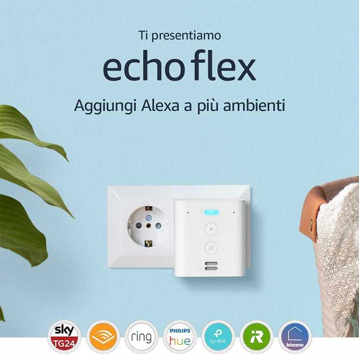 Echo flex
