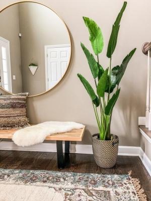 Singole piante extra large, da trendedecor.com