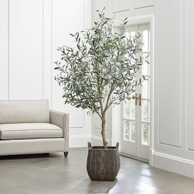 L'olivo in vaso, da adorable-home.com