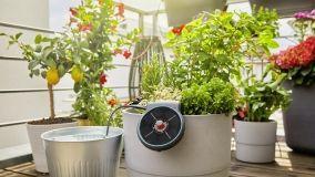 Innaffiare le piante in vaso anche quando siamo in vacanza