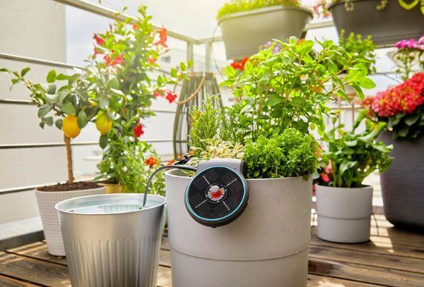 Set irrigazione automatica piante AquaBloom di Gardena