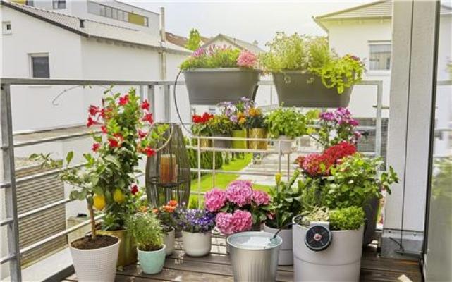 Sistema Aqua Bloom a energia solare per irrigazione piante da esterno di Gardena