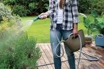 Irrigazione piante con tubo estensibile di GF Garden su Amazon