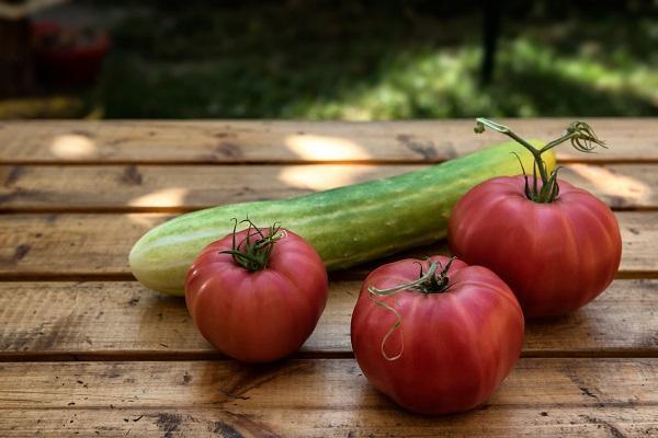 Orto domestico: quali ortaggi coltivare