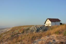 Casa al mare: verde esterno da sistemare