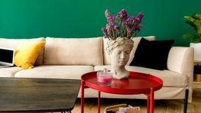 Vasi per piante d'appartamento originali e funzionali
