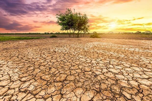 Effetti del surriscaldamento terreste