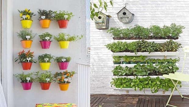 Come fare un orto verticale su balconi e terrazzi