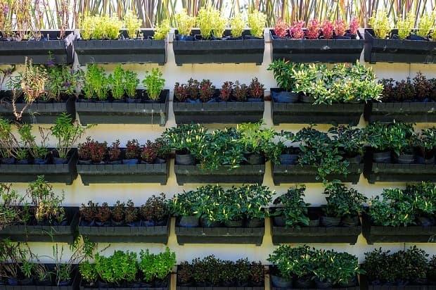 Come coltivare orto verticale, da dekoruma.com
