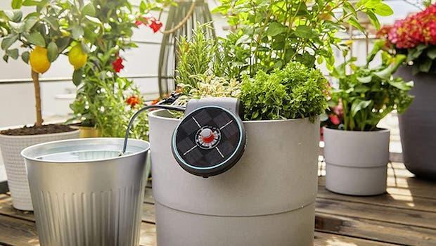 Kit di irrigazione fuori terra Aquabloom - Foto by Gardena