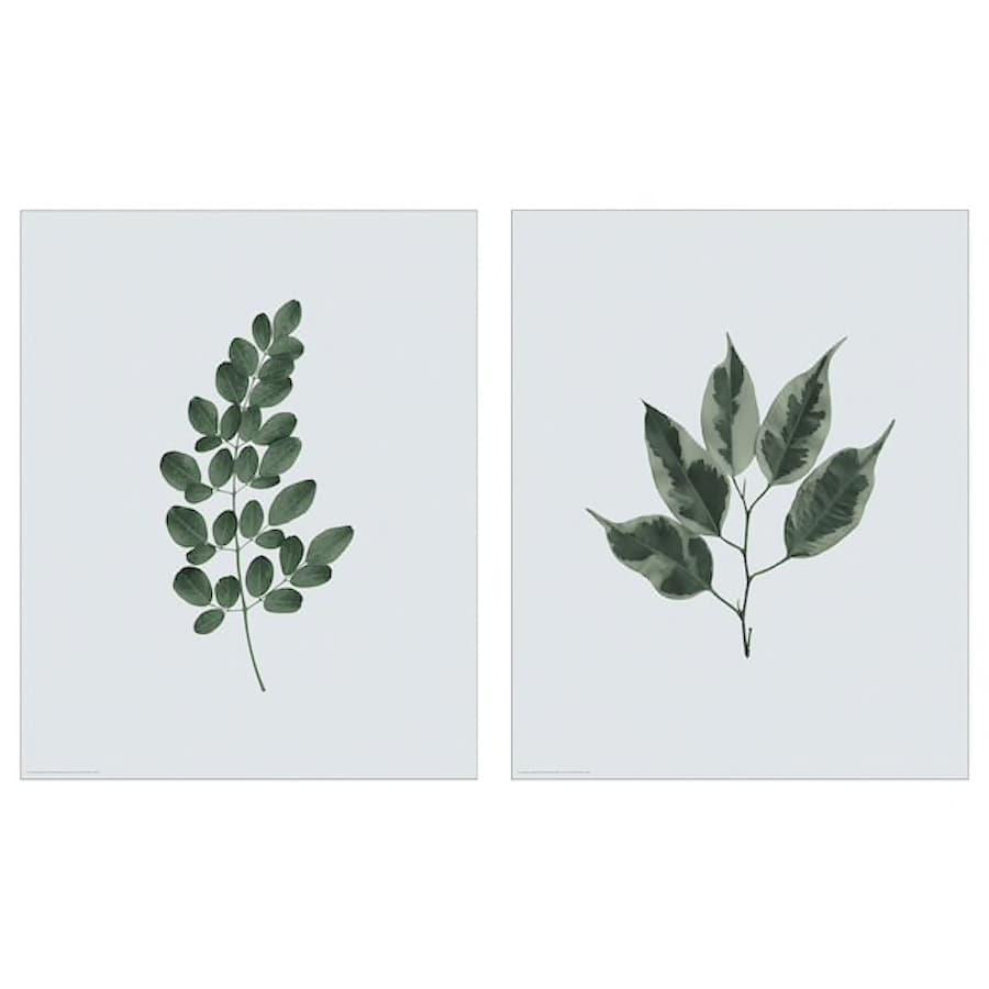 Poster BILD con piante a foglie verde - Design e foto by Ikea
