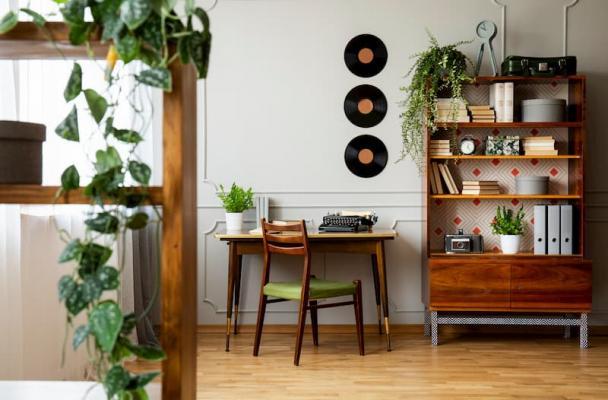 Piante da libreria che si adattano allo stile della stanza