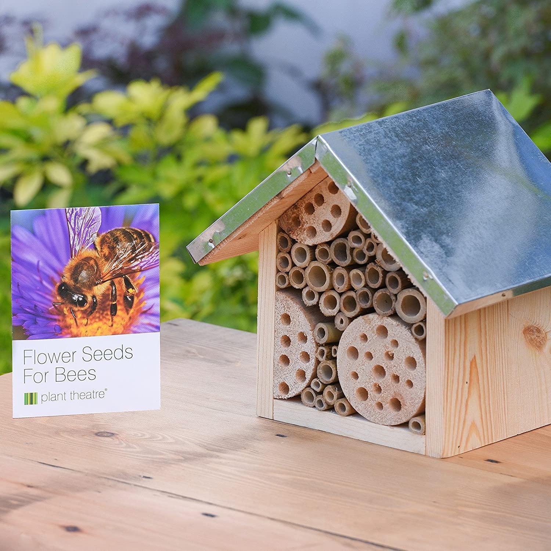 Casetta per api e semi Plant Theatre su Amazon