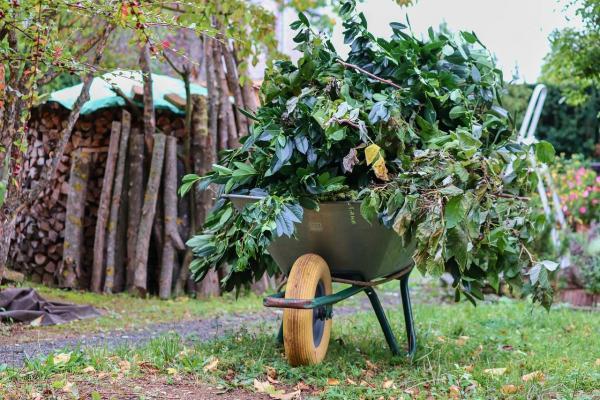 Tradizionale carriola per orto o giardino