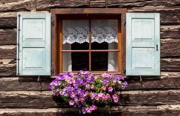 Piante profumate sul balcone geranio