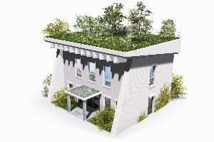 Trasformare il tetto in tetto verde - Tetto a falde inclinate ...