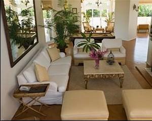 L'importanza della presenza del verde negli ambienti interni: un interno con piante varie