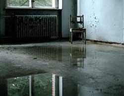 Il risanamento dei locali danneggiati dall'acqua: l'allagamento di una abitazione