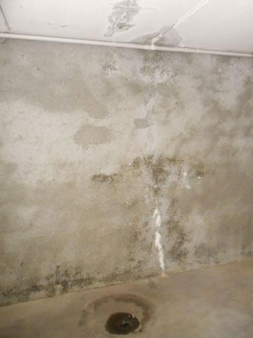Umidità muri fenomeno d'infiltrazione acqua