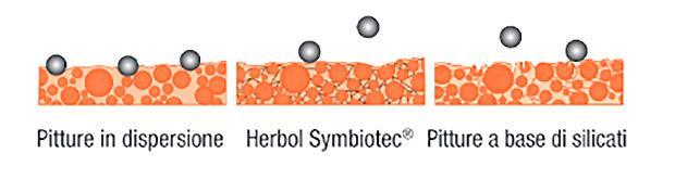 Herbol Symbiotec_ Schema comportamento particelle di sporco.