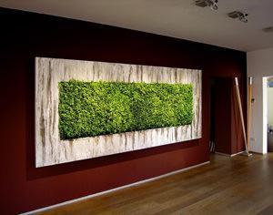 Blumohito quadro vegetale
