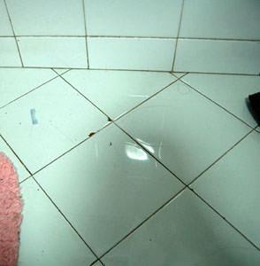 L'igiene in bagno: parti di rivestimento ceramico saltate