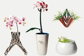 Vaso in fiore 2