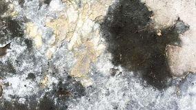 Cause e rimedi per l'umidità di risalita