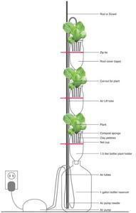 coltivazione idroponica_finestra