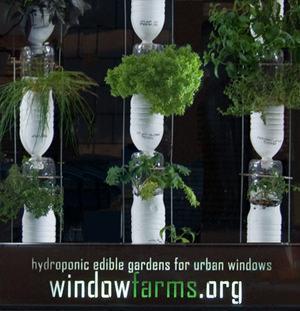 Window Farms_2