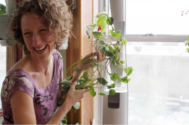 Micro garden - Windowfarm