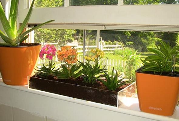 Kit per Micro garden su Amazon